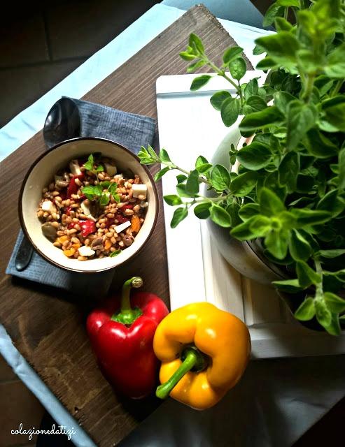 Insalata di farro peperoni e primosale